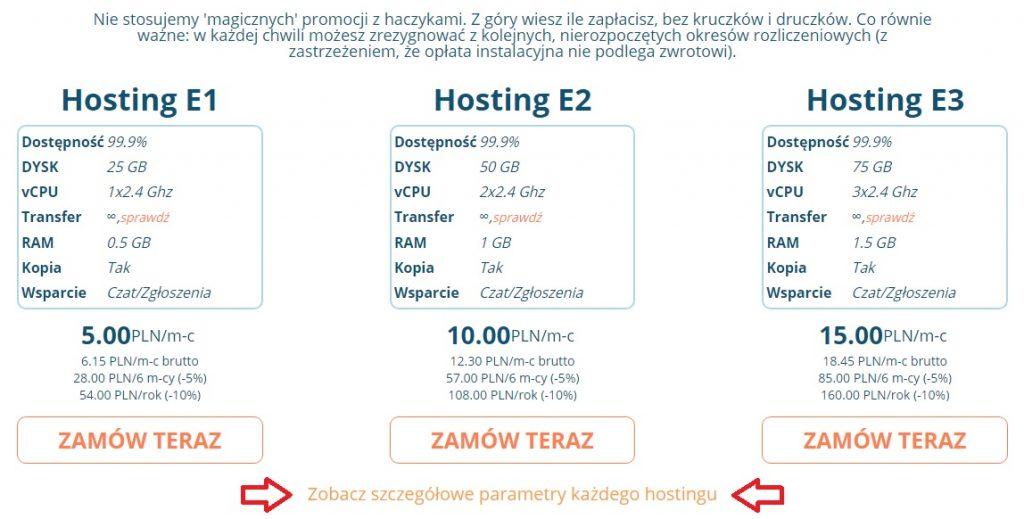 jaki-hosting-ekonomiczny